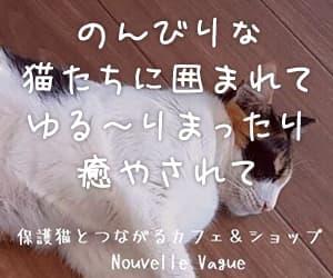 沖縄県宜野湾市|保護ねこカフェ「ヌーベルバーグ」プレミアムペットフード・ペット用品販売